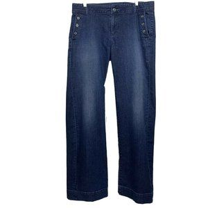ANN TAYLOR LOFT Jeans MODERN FLARE Dark Wash 10